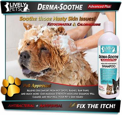 خرید پستی  شامپو نرم کننده حیوانات خانگی lively pets