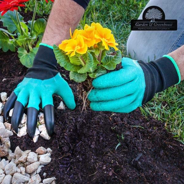 خرید پستی  دستکش ناخن دار باغبانی دوکاره
