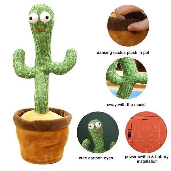 کاکتوس رقصنده, خرید کاکتوس رقصنده, قیمت کاکتوس رقصنده, سفارش کاکتوس رقصنده, کاکتوس رقصنده تخفیف ویژه, تخفیفانه کاکتوس رقصنده, کاکتوس, رقصنده, Dancing Cactus, کاکتوس رقصنده Dancing Cactus,Magic pot of dancing cactus,Magic pot of dancing cactus,